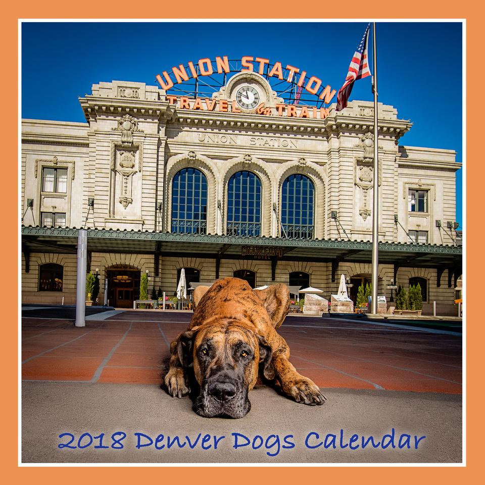 Denver Dogs Calendar; Dogs of Denver, Union Station Dog Photo; Milestone Imaging Dog Photography, Denver Dog Photographer