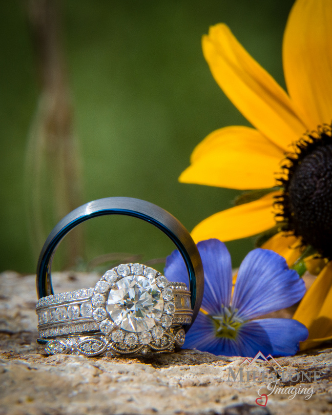 Rings photographed by Colorado Wedding Photographers, Milestone Imaging