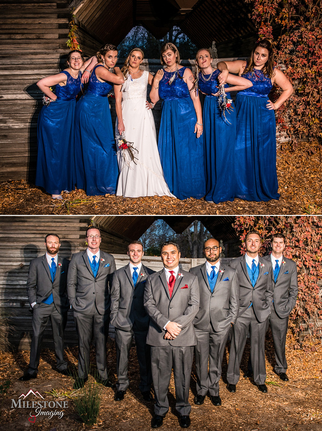Bridesmaids and Groomsmen photographed by Denver Wedding Photographer, Milestone Imaging