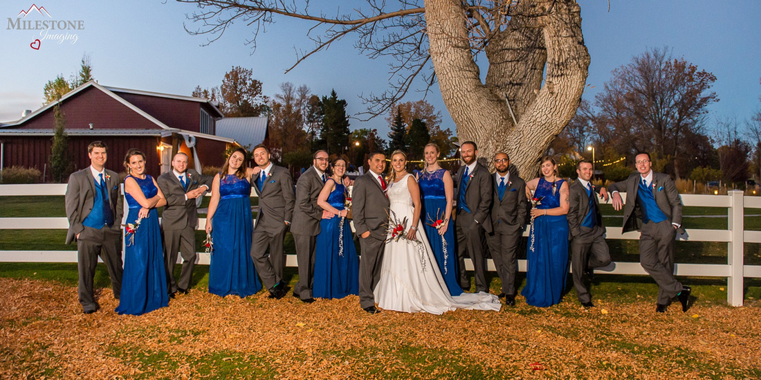 Bridal party photographed by Denver, Colorado Wedding Photographers, Milestone Imaging