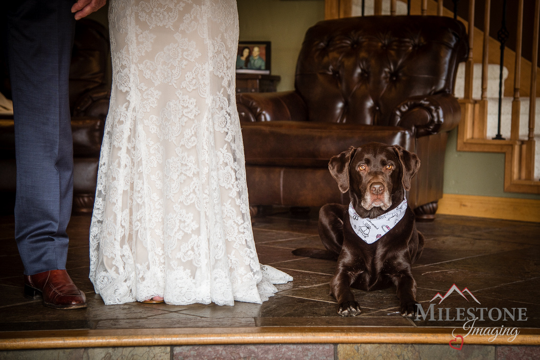 Wedding photography by Colorado Wedding Photographers, Milestone Imaging