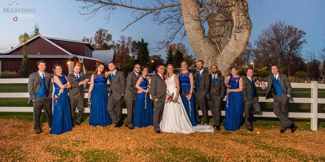Bridal party photographed by Denver, Colorado Wedding Photographers, Milestone Imaging